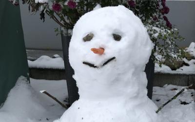 Der Zauber des Schnees